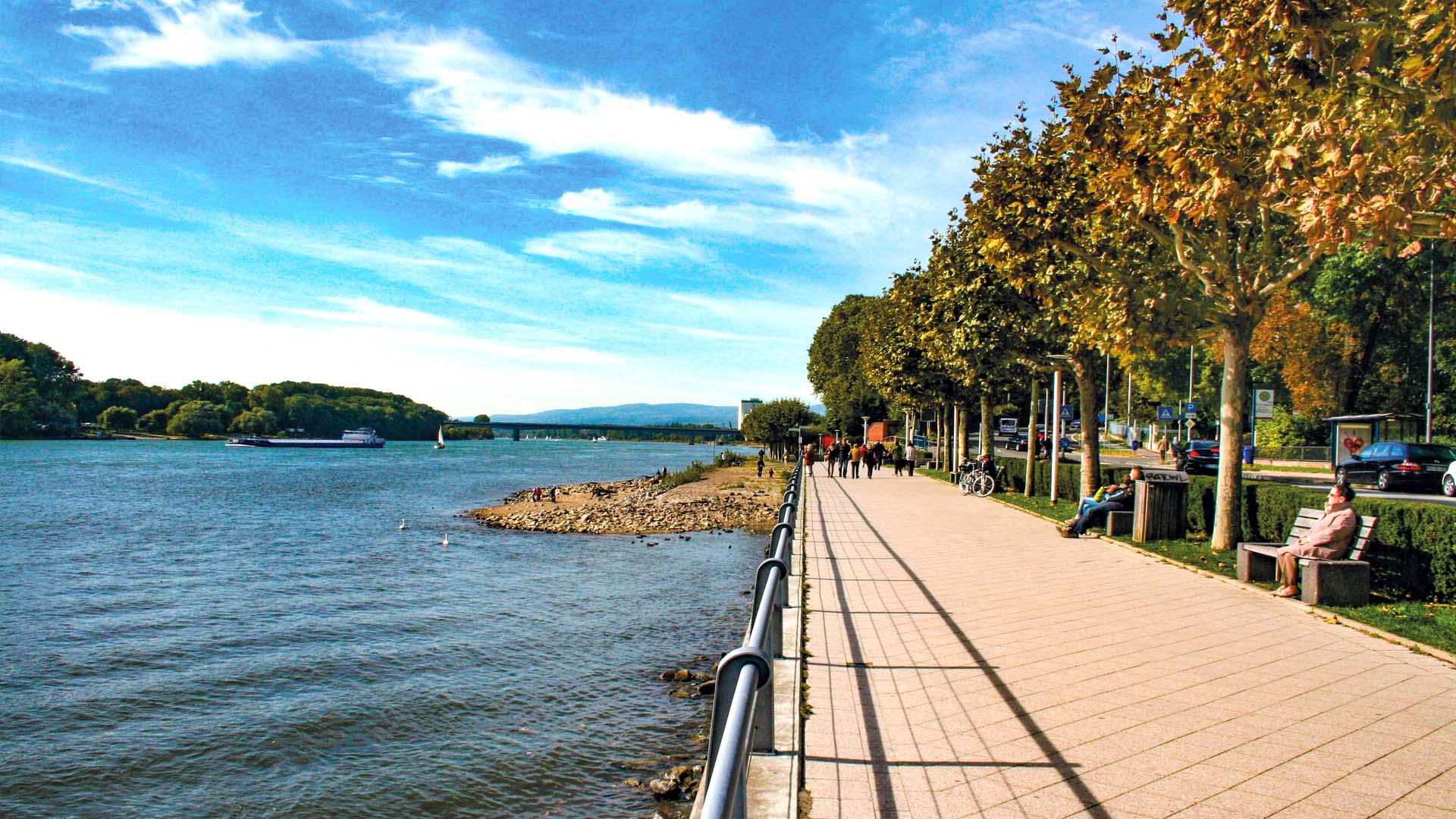 Rheinufer bei Biebrich